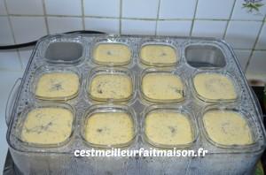 Crème dessert aux œufs et à la vanille
