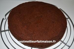 Gâteau double chocolat