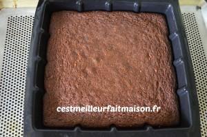 Gâteau chocolat praliné
