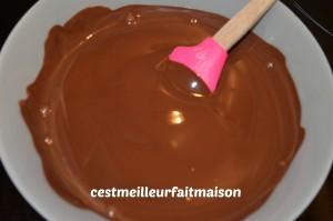 Gâteau au chocolat sans beurre ni sucre