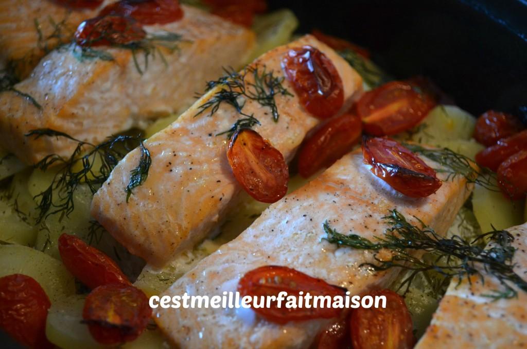 Gratin de pommes de terre au saumon