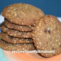 ablées aux graines (sans gluten, sans œuf, sans laitage)
