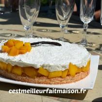 Gâteau noix de coco mangue vanille