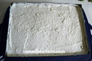 Gâteau noix de coco vanille fraise