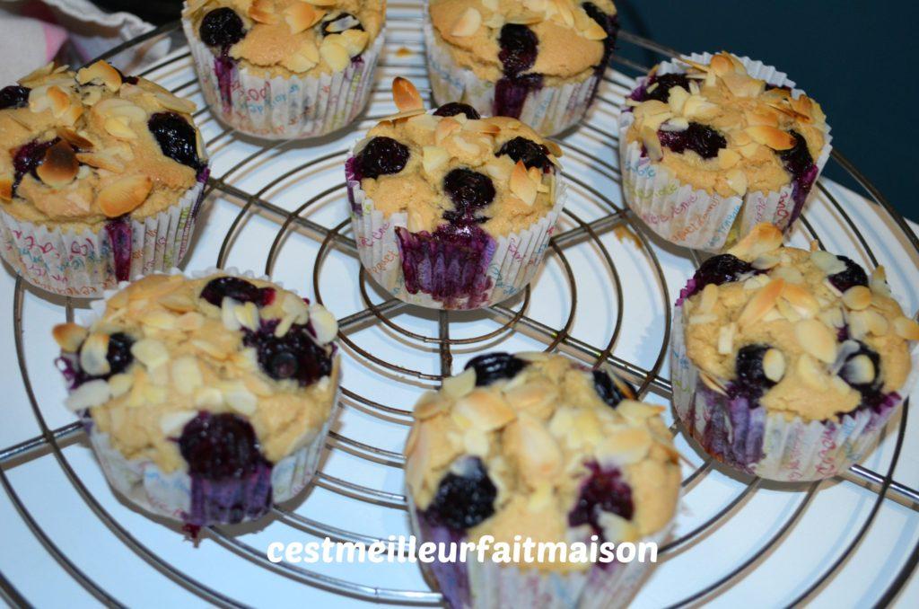 Muffins aux myrtilles (sans œufs, sans lait et sans gluten)